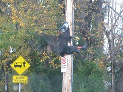 witch_8825 (Michael.C.G) Tags: witch halloween broom crashed 2016 oakbay decorations