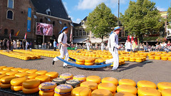 (Lin ChRis) Tags: cheesemarket alkmaar holland netherlands 荷蘭 阿爾克馬爾 trip travel cheese market kaasmarkt day