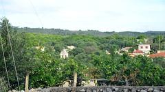 Kampi View