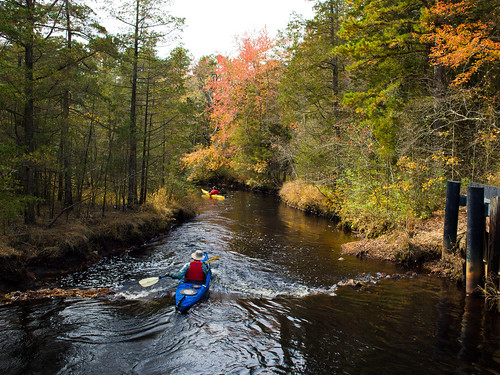Kayak in Black Water