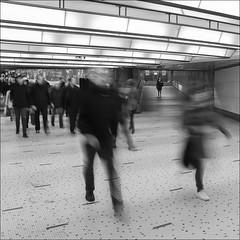 L'urbaine solitude (chando*) Tags: blackwhite brussels bruxelles carr centralstation commuters corridor couloir femme garecentrale gens monochrome navetteurs noiretblanc people square streetphotography woman