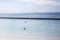 Beach (daniellih) Tags: 2016 october oahu hawaii freelensing freelens freelancer freelense waikikibeach waikiki beach people water shore bay tropic outdoor nature landscape scape swimming swim float island tropics tropical