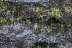 Wasser-Gras-Fels (bernhard huber) Tags: colorefexpro gras natur nature wasser wasserfall color colour green grün sommer zillertal hiking summer wandern