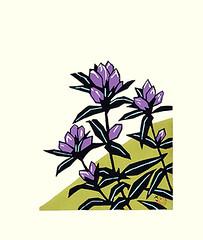 Scabrous gentian (Japanese Flower and Bird Art) Tags: flower scabrous gentian gentiana scabra gentianaceae saburo miyata modern woodblock print japan japanese art readercollection