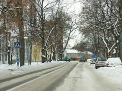 Towards downtown    [L1190232] (SeppoU [Read 'About' for info!]) Tags: suomi finland raasepori tammisaari puinen wooden arkkitehtuuri architecture talo house kaupunki town talvi winter marraskuu november 2016 leica vlux1