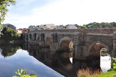 DSC_3315 Puente Romano (David Barrio López) Tags: puente bridge reflejos reflections arcoapuntado riomiño rio miño river patrimoniodelahumanidad caminodesantiago sanfroilan lucusaugusti lugo galicia spain nikon d90 davidbarriolópez puenteromano davidbarrio nikond90