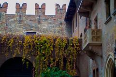 DSC_2198 (marcog91) Tags: urban verona italy river architecture outdoor around world discover amatorial italia city veneto romeo giulietta love