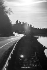 Loch Lomond (adam_reynolds) Tags: scotland loch lomond black white bnw bw sun sunset flare