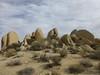 (ArgyleMJH) Tags: joshuatreenationalpark geology igneous granite monzogranite whitetank inselberg jointing fractures spheroidallyweathered cretaceous california desert