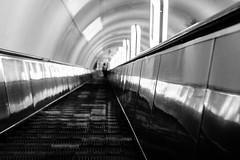 (lex.batiuk) Tags: moving metro escalator staircase