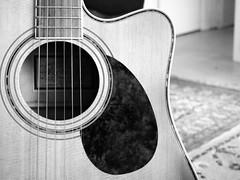 250_cutaway (Lamerie) Tags: guitar instrument strings 365 spruce 250 solidtop freshmandreadnoughtcutaway