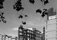 Rebuilding Bart's Square (tommyajohansson) Tags: blackandwhite london blancoynegro monochrome geotagged demolition buildingsite cityoflondon faved blancetnoir svartvitt squaremile bartshospital schwarzundweiss dominionhouse tommyajohansson