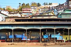 India - West Bengal - Darjeeling Himalayan Railway - Steam Locomotives 788B-Tusker & 802B-Victor - 62 (asienman) Tags: india westbengal darjeelinghimalayanrailway asienmanphotography