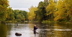 Fly Fishing - Farmington River CT (S&L Smith) Tags: fishing connecticut flyfishing 50mmf14 canonfl nex5r
