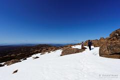 20151004-09-Snow on Rodway Range (Roger T Wong) Tags: snow outdoors nationalpark rocks walk australia hike alpine tasmania np bushwalk tramp 2015 subalpine mtfield dolerite rodwayrange sony1635 rogertwong sel1635z sonya7ii sonyilce7m2 sonyalpha7ii sonyfe1635mmf4zaosscarlzeissvariotessart