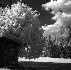 patchouli... the scent of a lens ;/) (schyter) Tags: china bw 120 6x6 film recipe ir soup monocromo long exposure bn homemade filter e infrared epson medium format mf f22 ttl v600 expired kiev bianco development nero medio bianconero  60 analogica lunga esposizione analogic formato efke blackwithe r72 pellicola allaperto infrarosso 720nm volna3 scaduta ir820 chebarkul homemadescanned