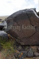 30095317 (wolfgangkaehler) Tags: old animals rock asian ancient asia desert deer mongolia anima centralasia petroglyph gobi blackmountains petroglyphs mongolian gobidesert southernmongolia
