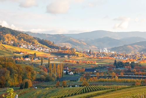 Vue sur Oberkirch depuis Tiergarten