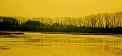 Barrie`s Lake (Eyad Elbayoumi) Tags: trees cambridge lake ontario canada tree water beautiful fishing landscaping explore waterloo barrie wetland on oxfordcounty abigfave northdumfries barrieslake exploreontario
