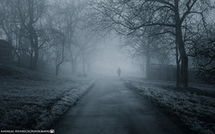 The Ghost in the Fog. (andreasheinrich) Tags: november blackandwhite cold fog germany deutschland person moody nebel path ghost geist kalt weg badenwürttemberg düster neckarsulm schwarzweis nikond7000