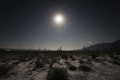 When nothingness transforms everything 002 (nydialilian) Tags: light cactus sky moon nature dark mexico cuatro long exposure glow shine desert outdoor space deep planet moonlight astronomy desierto starry cosmos starlight cienegas
