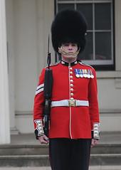 Img554974nx2 (veryamateurish) Tags: unitedkingdom british military army london wellingtonbarracks changingoftheguard publicduties ceremonial guardmounting newguard footguards householddivision grenadierguards