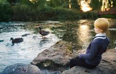 River Coln, Bibury (Wanda ) Tags: bjd iplehouse england travel nyid eddie ra