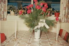 Flowers (neshachan) Tags: family familyphotos flowers