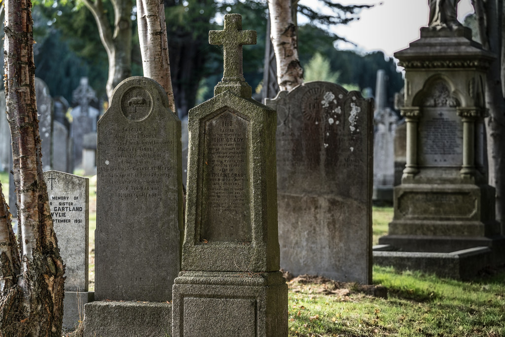 A QUICK VISIT TO GLASNEVIN CEMETERY[SONY F2.8 70-200 GM LENS]-122055