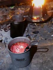 IMG_8524 (Thorius) Tags: bushcraft hobo stove titanium ultralight camping outdoor vargo