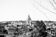 Roofs (lorenzoviolone) Tags: agfascala200 bw blackwhite blackandwhite buildings cityscape d5200 dof landscape monochrome towers vsco vscofilm basilica churches clearsky depthoffield dome domes nature shallowofdepth sky skyline sticks streetphoto streetphotobw streetphotography tree walk:rome=march2016 winter roma lazio italy fav10