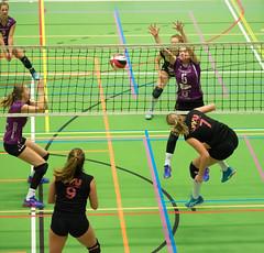 1B260793 (roel.ubels) Tags: vv utrecht eurosped galgewaard volleybal volleyball 18 finale nationale beker