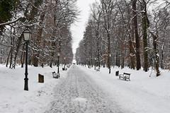 Park Maksimir, Zagreb, Hrvatska / Croatia (Hrvoje aek) Tags: priroda nature park maksimir perivoj hrvatska croatia d7200 zagrebzoo zoo snijeg snow zima winter kroatien croazia parkmaksimir staza path vidikovac belvedere