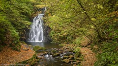 Gleno Waterfall (Stephen_Lavery) Tags: autumn countyantrim gleno ireland northernireland autumnal brook ebb flow forest grass leaves rock stream trees water