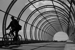 Curves (Birdhouse camper) Tags: copenhagen denmark street silhouette blackandwhite blackwhite bicycle curves fujifilm fuji fujifilmx100s pov