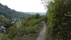 Blick vom Felsenweg auf Oberwesel