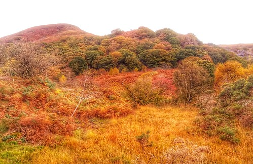 Dinas view in autumn.