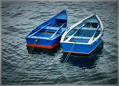 5236-Porto (jl.cernadas) Tags: barca barcas remo puerto porto marineras mar sea agua auga water corua galicia spain espaa europa europe