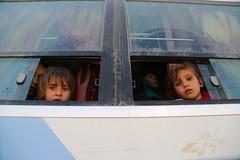 عمليات الاغاثة وتقديم المساعدات الى العوائل النازحة من مختلف قرى ومناطق محافظة نينوى (7) (جمعية الهلال الاحمر العراق) Tags: نينوى موصل مساعدات مساعداتانسانية
