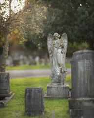 (Attila Pasek) Tags: 300mmf28 brenizer tamron angel bokeh broken cemetery graveyard method panorama statue