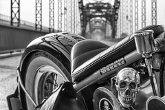 Life after death (michael_hamburg69) Tags: hamburg germany deutschland river fluss elbe elbbrcke bridge alteharburgerelbbrcke 1899 stahlbogenbrcke stahl steel sderelbe sandstein portal sandsteinportal hubertstier steelarchbridge hansestadt brcke motorrad triumph 6t thunderbird classicbike vintage motorcycle 19601962 doppeltesbrustrohr geltetefittings geschraubtesheck motor 650ccm silkshiftgetriebe 1961 totenkopf totenschdel skull sticker