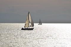 Silver Sea (Kotsikonas Elias) Tags: sea water yacht yachting athens greece boat nikon d3300