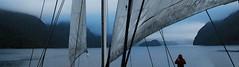 Finding the Kingdom of the Isles - reedited (coollessons2004) Tags: newzealand doubtfulsound fiordlandnavigator fiordland isles islands mist ship ocean sea fiord sound sail