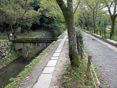 Path of Philosophy (D-Stanley) Tags: path philosophy sosui canal kyoto japan