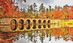 The Last of Autumn's Reflections ...... (~ Cindy~) Tags: county cumberland park state reflection autumnal bridge 2016