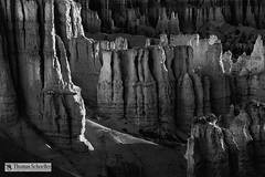 The Silent City-B&W  Bryce Canyon (Thomas Schoeller Photography) Tags: brycecanyonnationalpark ampitheater silentcity hoodoos spires sandstone formations bw blackandwhite blackandwhiteart blackandwhitefineart utah monotone fineart fineartprints fineartnature thomasschoellerphotography contrast light nationalparksoftheusa nationalparks sunrisepoint