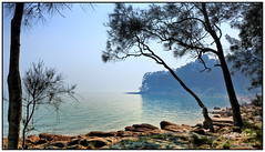 Smoke Over the Water (juliewilliams11) Tags: serene water shore photoborder rock trees smoke outdoor contrast newsouthwales australia landscape