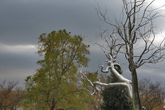 National Gallery of Art Sculpture Garden in Washington DC 19 111916 (evimeyer) Tags: nationalgalleryofart sculpturegarden washingtondc