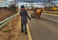 Hard hitchhiking (Alexandr Tikki) Tags: moldova travel hitchhiking world trip leveltravel fun horse elena girl outdoor nature village funny road