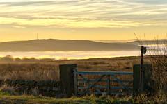 NB-19.jpg (neil.bulman) Tags: countryside longshawestate peakdistrict nature nationalpark derbyshire longshaw fog cloudinversion inversion cloud nationaltrust sheffield england unitedkingdom gb